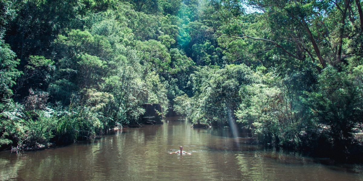 Man swimming in river surrounded by trees