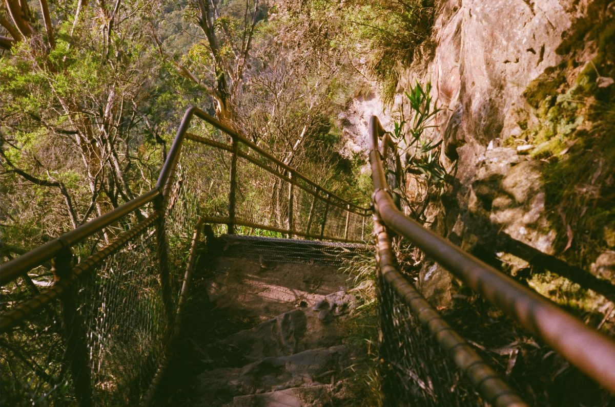 Old stairs down rock face in bush