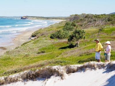 Grassy beach dunes on Yuraygir Coastal Walk