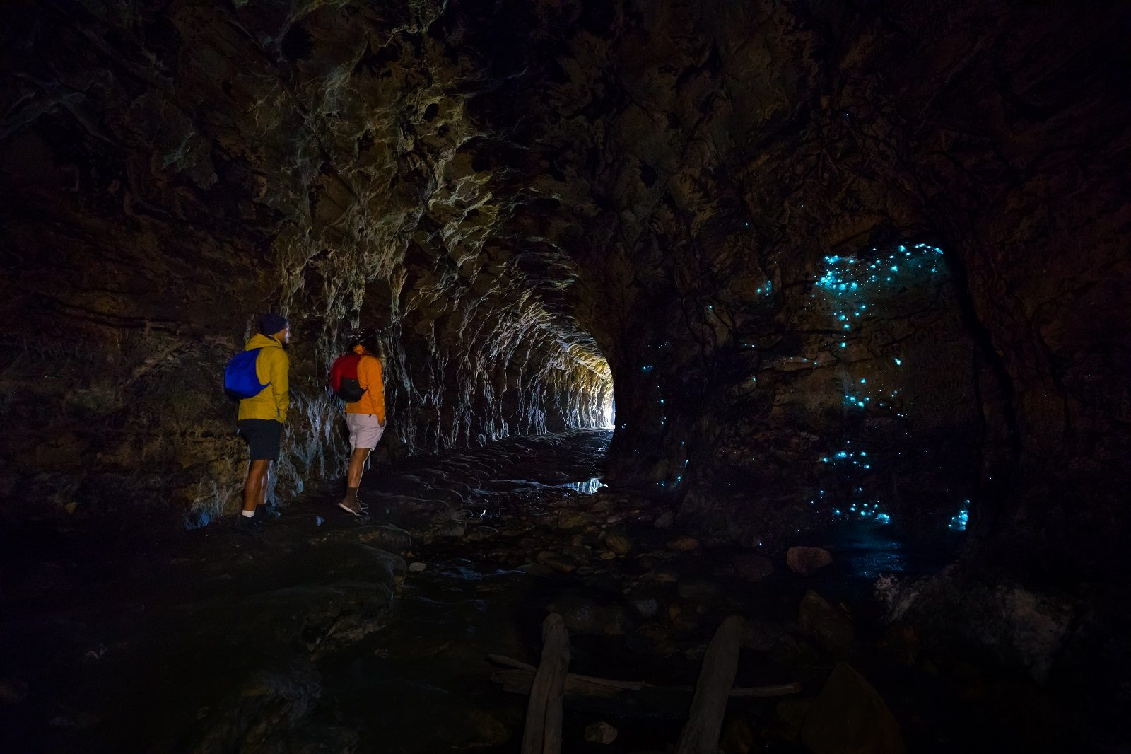 People walking in Newnes Glow Worm Tunnel. Photo: Daniel Tran/OEH
