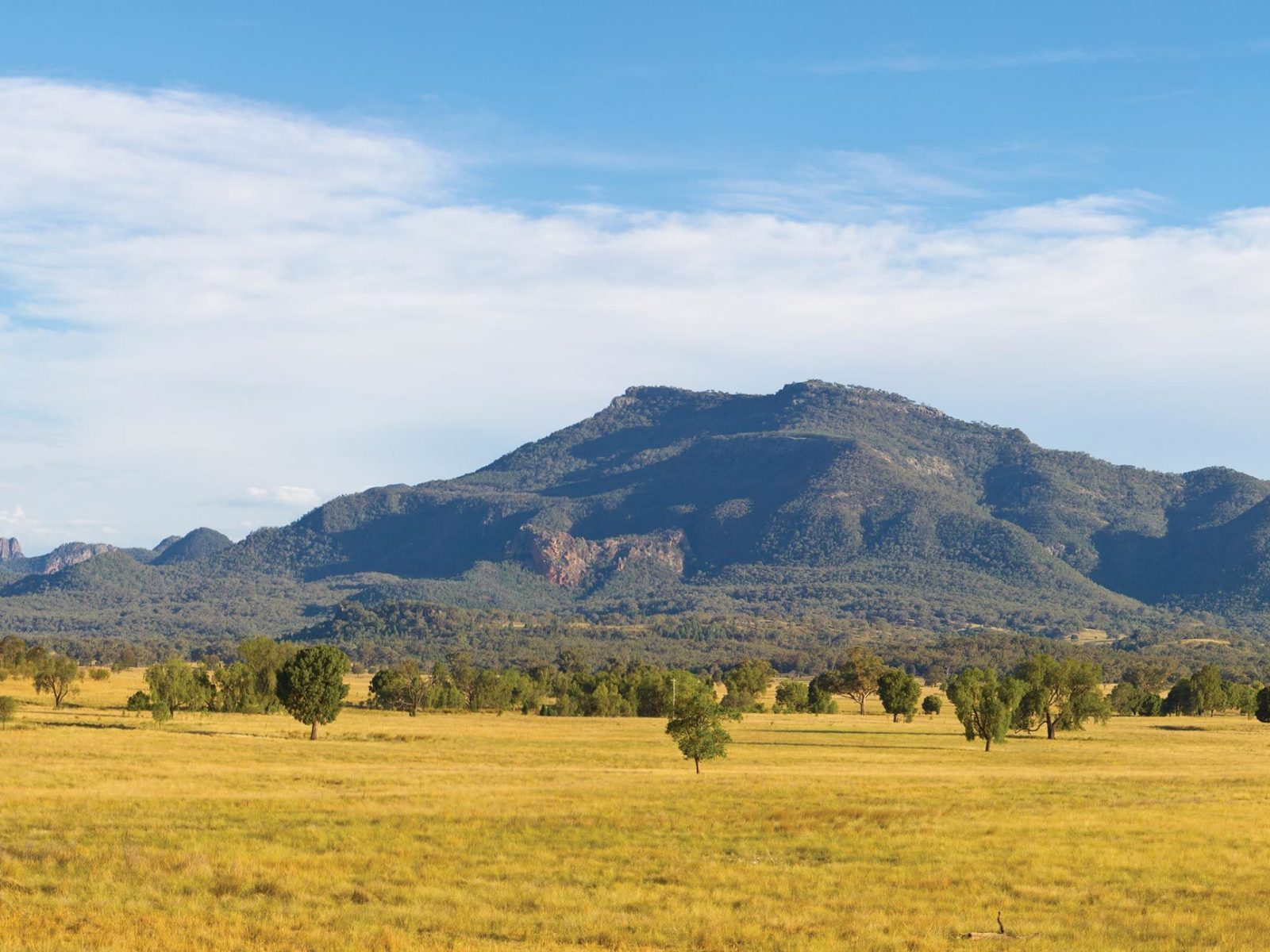 Mountains and plains in Coonabarabran, off Tooraweenah drive in Warrumbungle National Park