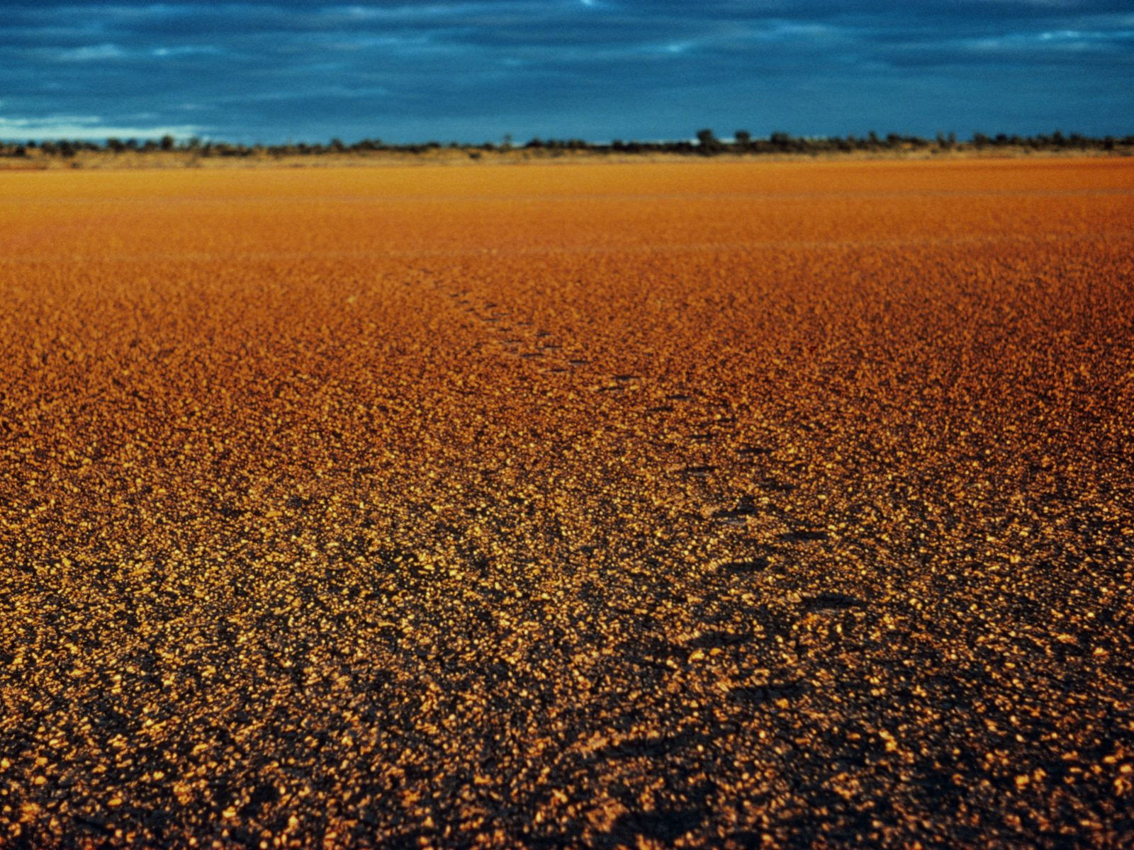 Cracked red dirt claypan, outback NSW Australia