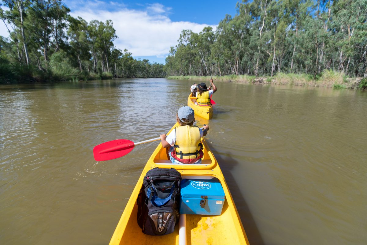 Family in canoes on the Murray River near Barmah and Swifts Creek