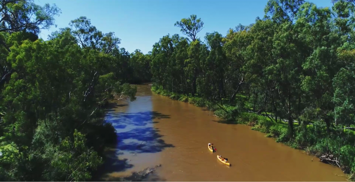 Family canoeing on the Murray River