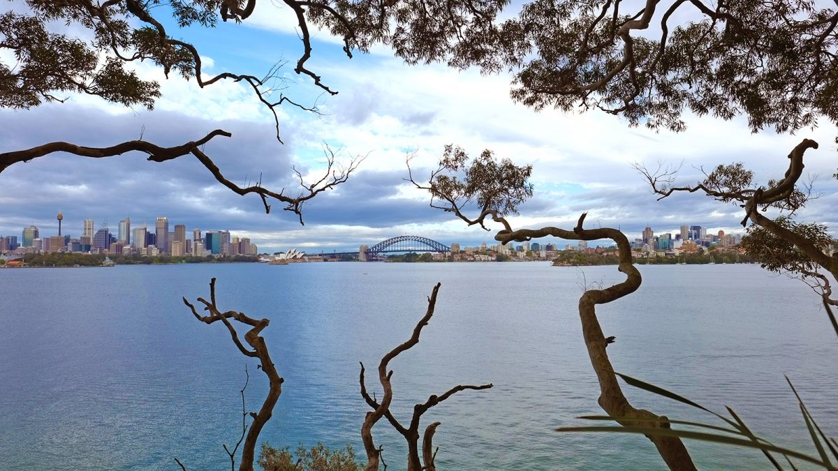 Views of the Sydney CBD from Bradleys Head, Sydney Harbour National Park. Photo: Elinor Sheargold/DPIE