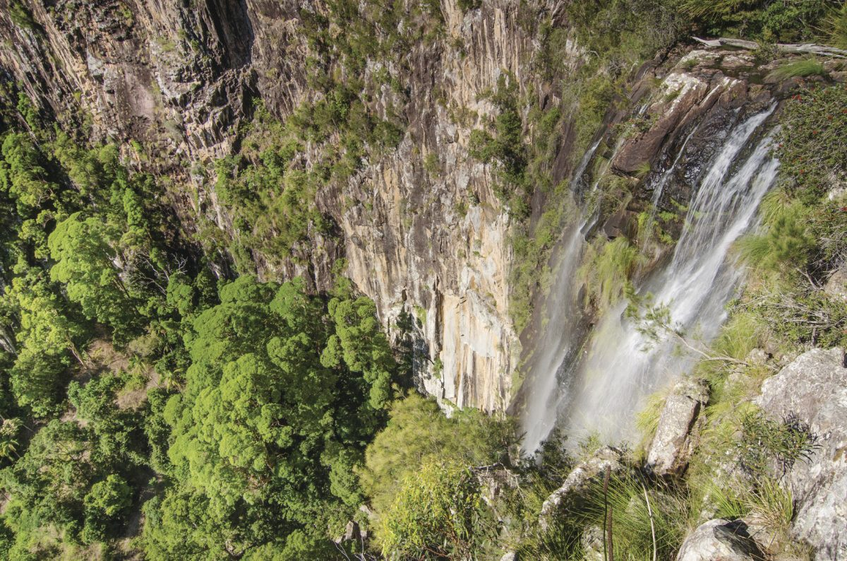 View of Minyon Falls from the lookout. Photo: John Spencer/DPIE