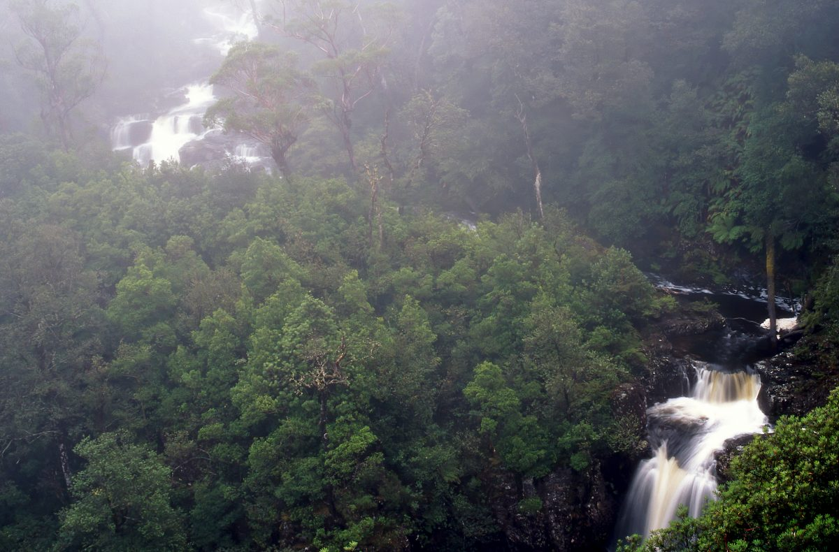 Misty view of the river in Barrington Tops National Park. Photo: Shane Ruming