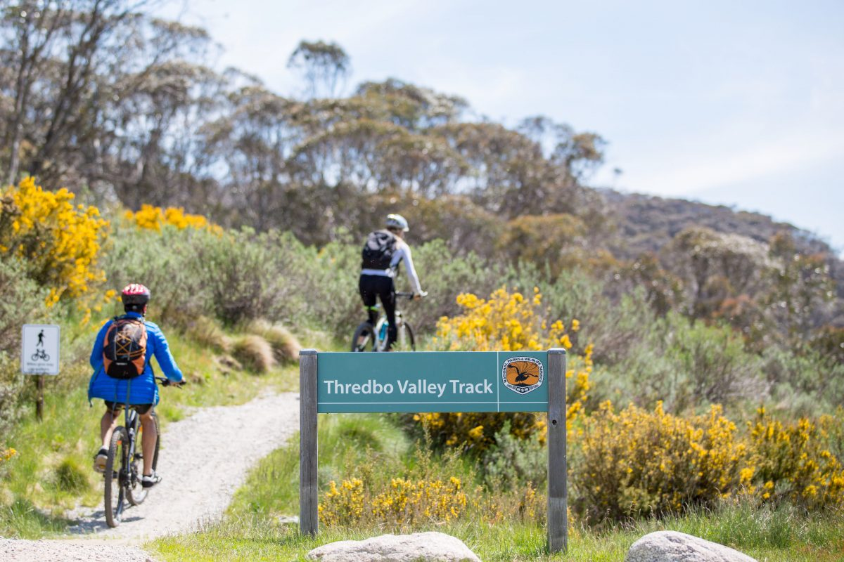 Two people riding on the Thredbo Valley Track