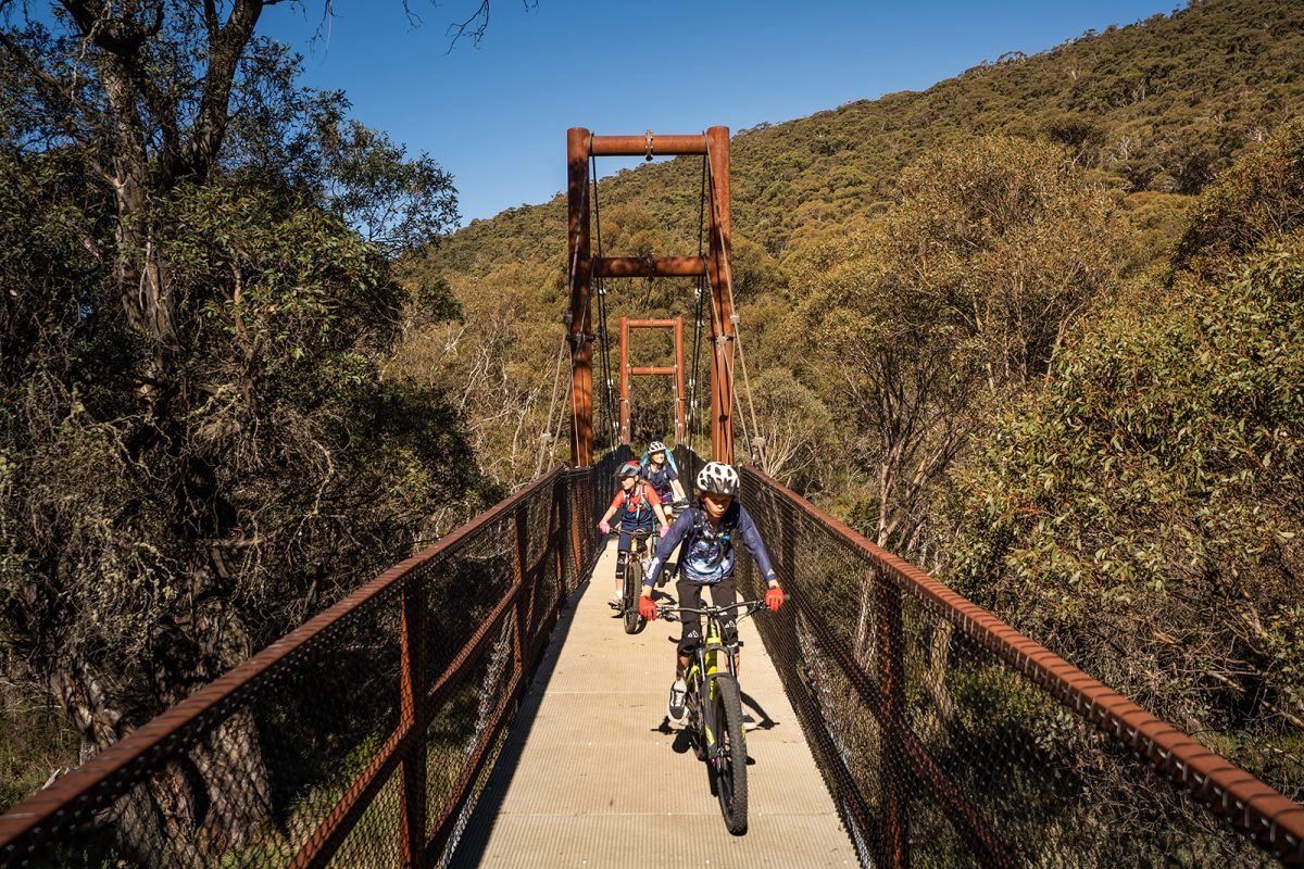 Face on view of people cycling across a bridge on Thredbo Valley track