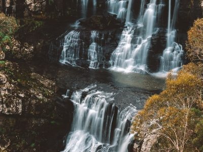 Waterfall in Dorrigo National Park. Photo: Branden Bodman/OEH