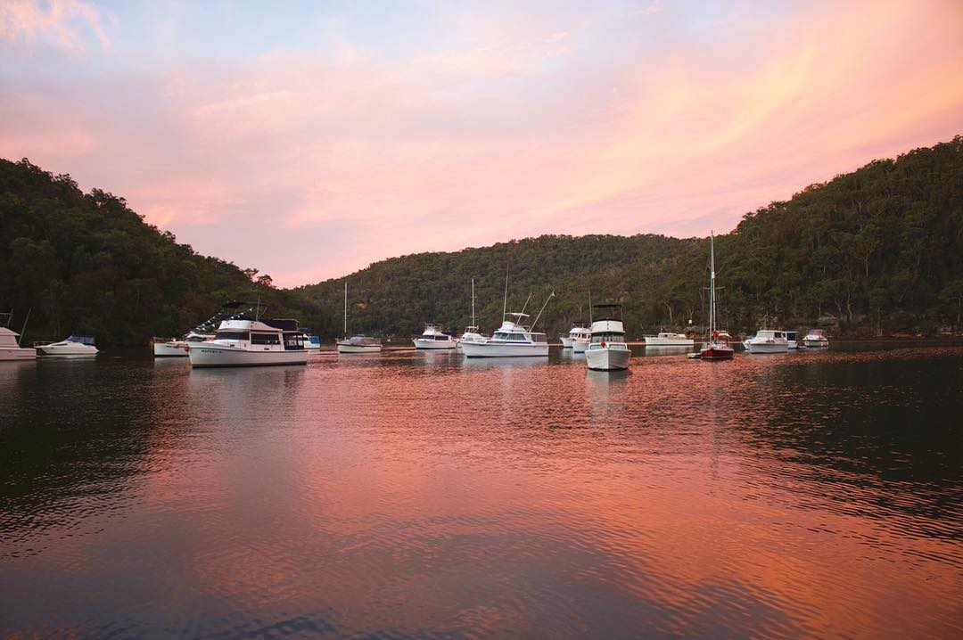 Sunset view of Apple Tree picnic area in Ku-ring-gai Chase National Park