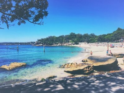 People swimming and on the sand at Shark Beach in Nielsen Park, Sydney Harbour National Park