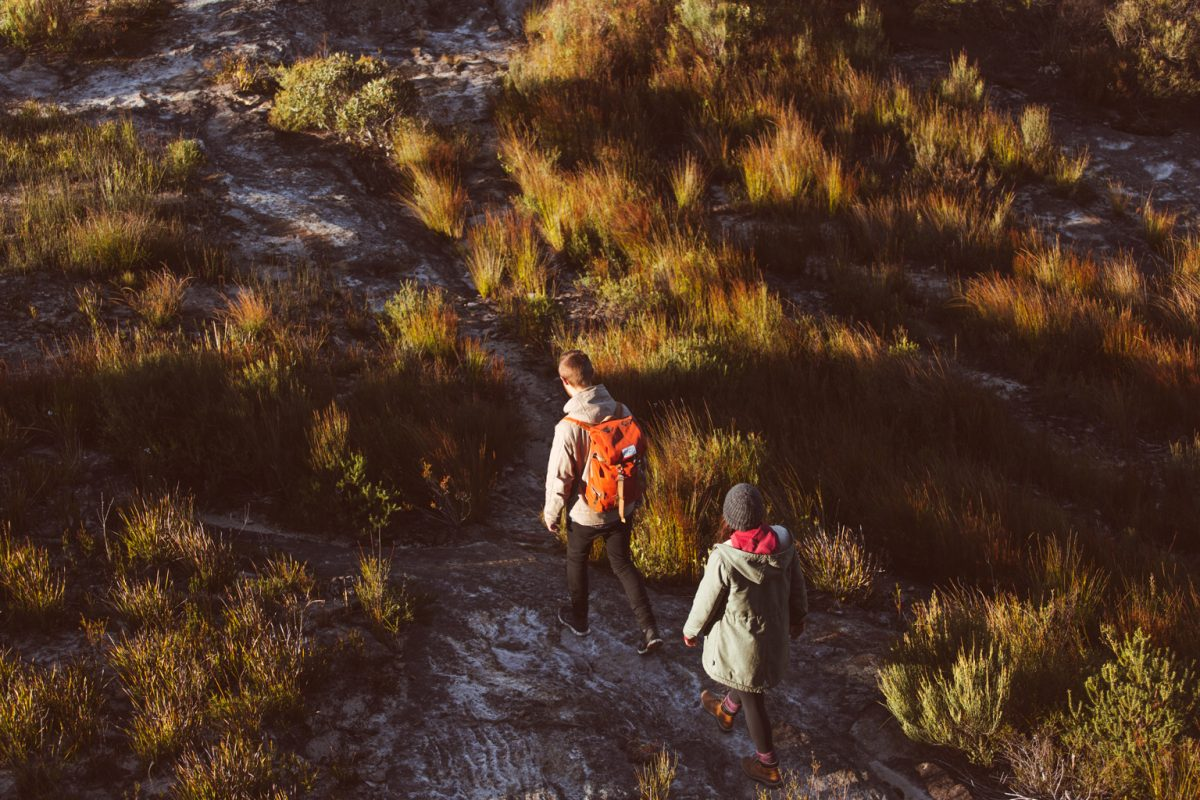 Two people hiking in Blue Mountains National Park. Photo: Tim Clark