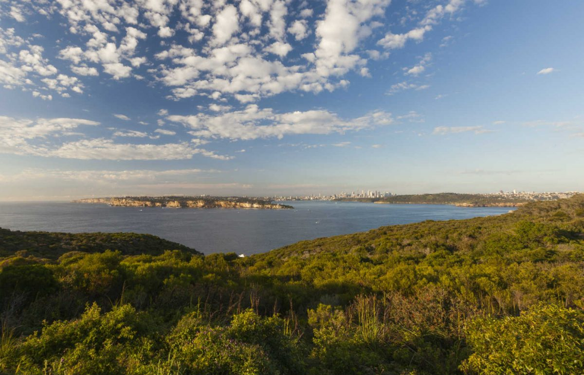 A view of Sydney from North Head
