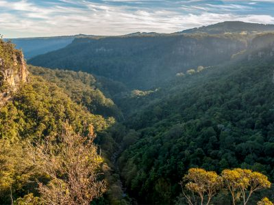 Scenic view from Izzards lookout track in Budderoo National Park. Photo: Michael Van Ewijk/DPIE