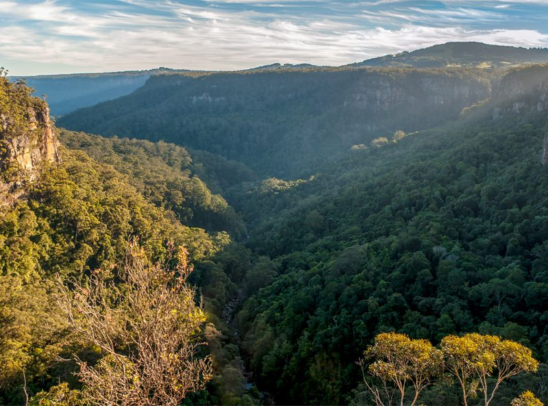 Scenic view from Izzards lookout track in Budderoo National Park. Photo: Michael Van Ewijk/OEH