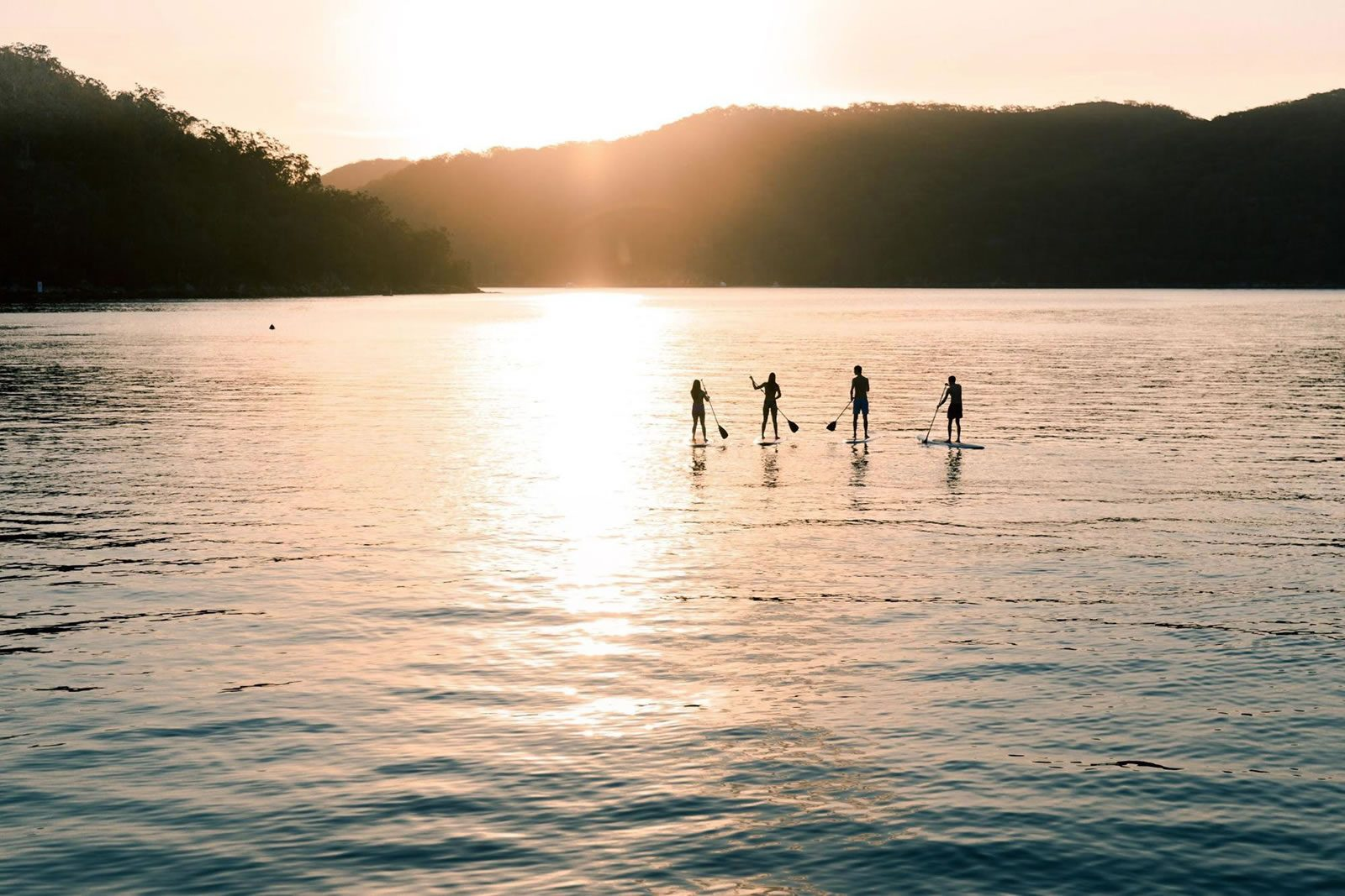 Four people stand-up paddleboarding at The Basin in Ku-ring-gai Chase National Park