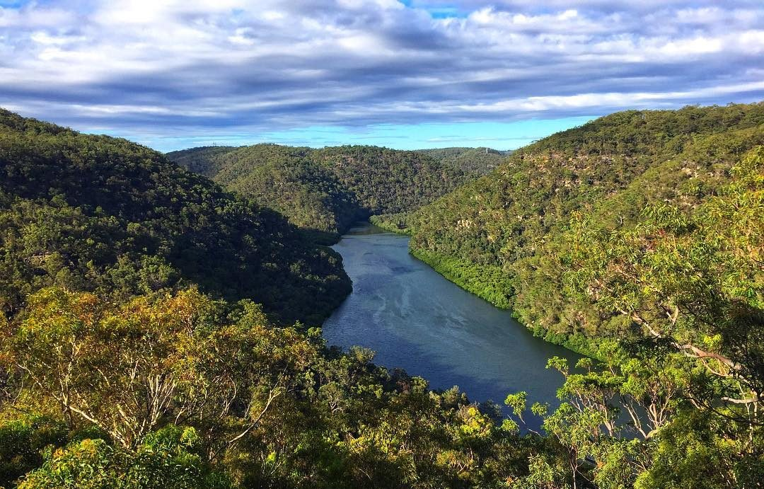 Views of Berowra Creek from Naa Badu lookout, Berowra Valley National Park. Photo: Matt Goodwin