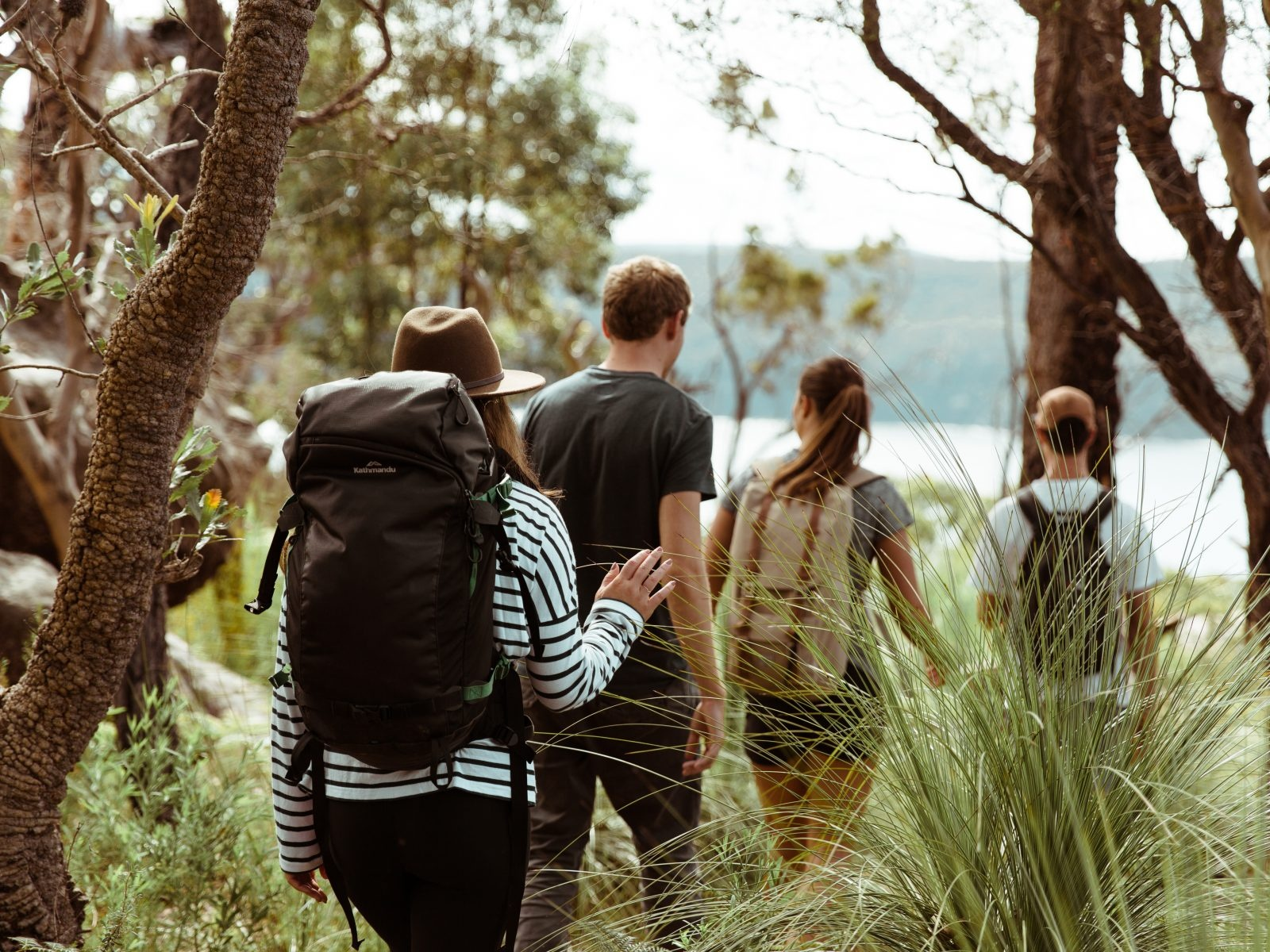 Group of people walking through Ku-ring-gai Chase National Park. Photo: Tim Clark/OEH
