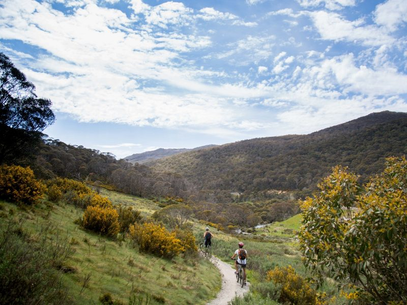Two people on bikes on a bike trial on the Thredbo Valley track in Kosciuszko National Park. Photo: Boen Ferguson/OEH