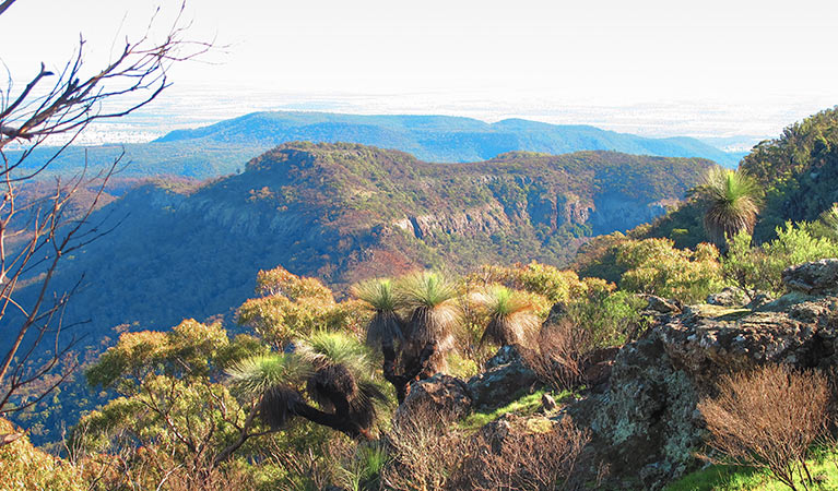 Scenic views from Mount Exmouth walking track in Warrumbungle National Park. Photo: Sue Brookhouse/OEH