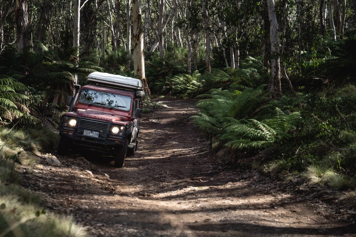 4WD on Barrington trail in Barrington Tops National Park. Photo: Rob Mulally/OEH