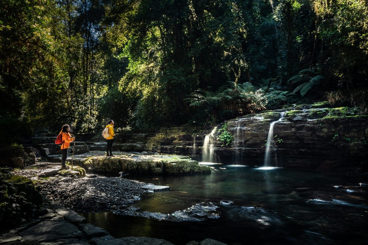 Hikers stopping on Rocky Crossing walk in Barrington Tops National Park. Photo: Rob Mulally/OEH