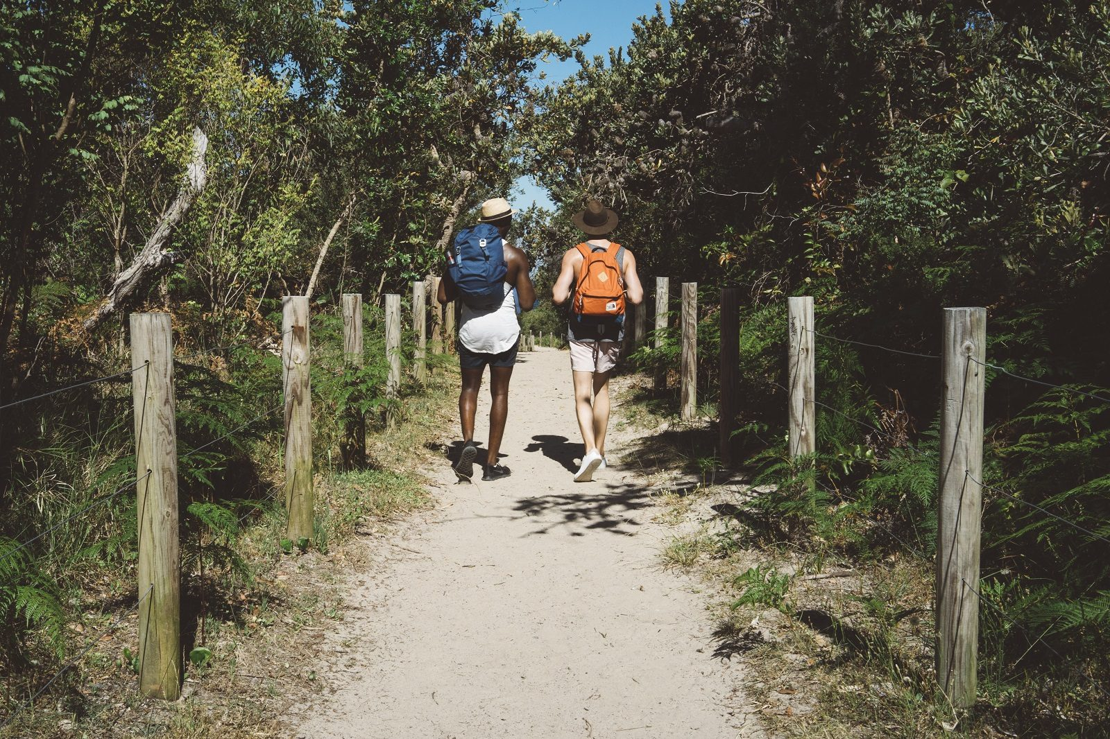 2 guys (back facing) walking down a track towards the beach in Tomaree National Park