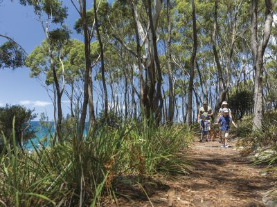 Family of four walking along a track in Jervis Bay National Park. Photo: David Finnegan/DPIE