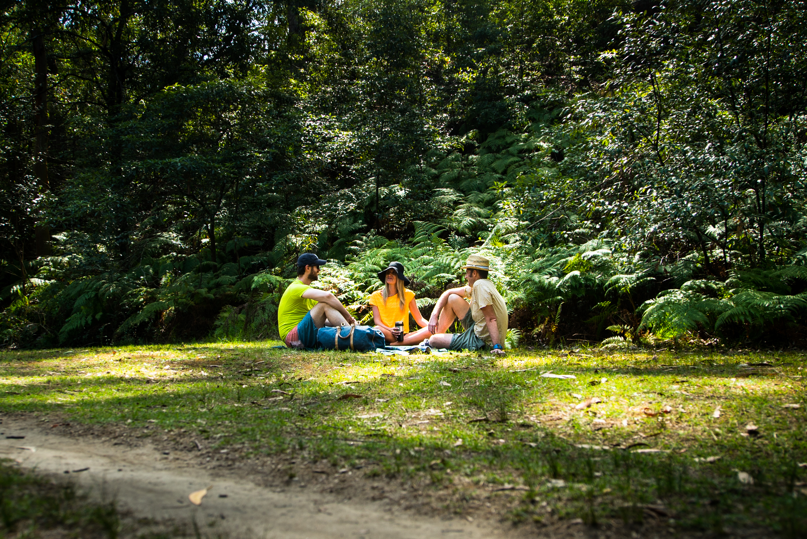 Three people having a picnic in a national park