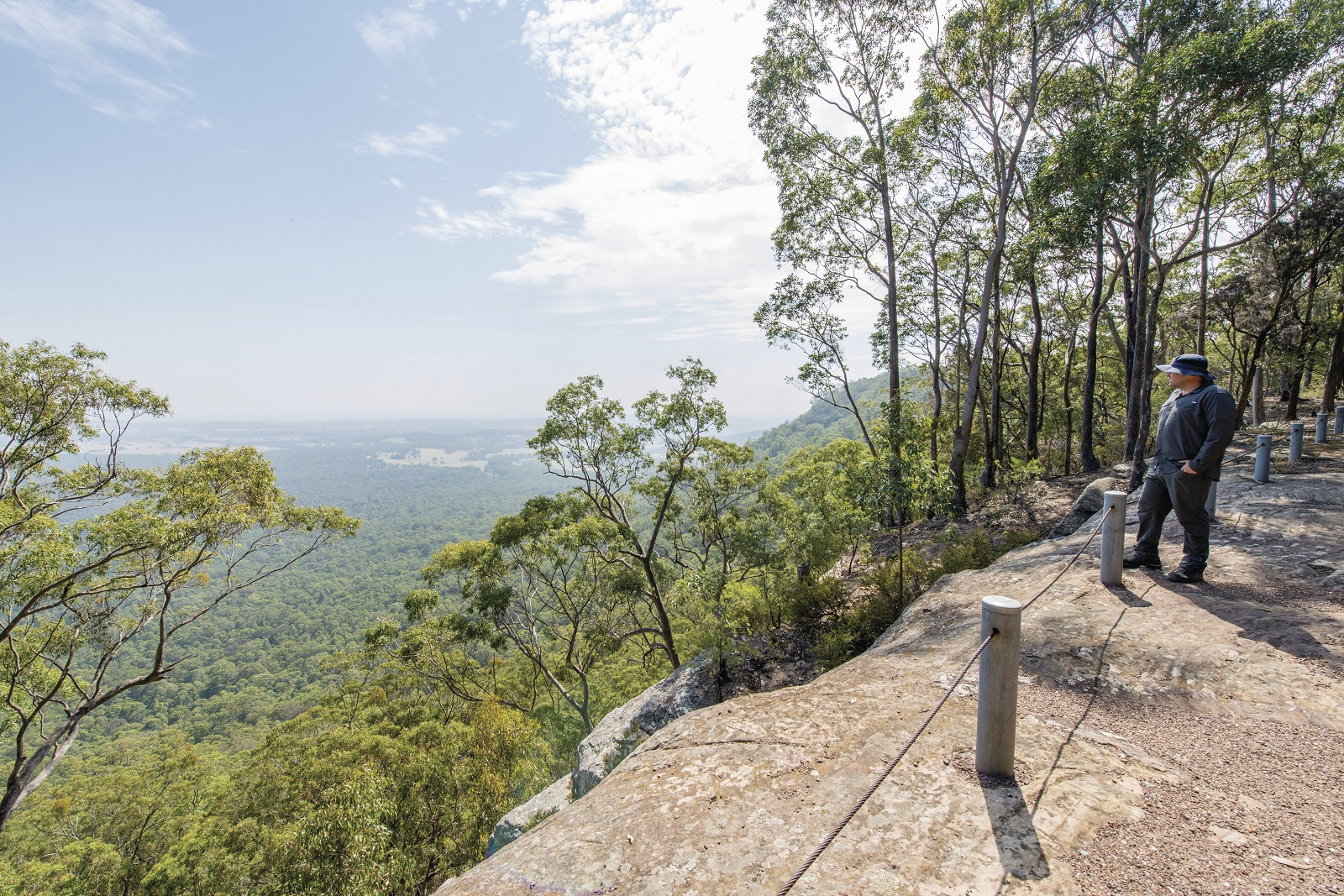 The Narrow Place lookout in Watagans National Park. Photo: John Spencer/OEH