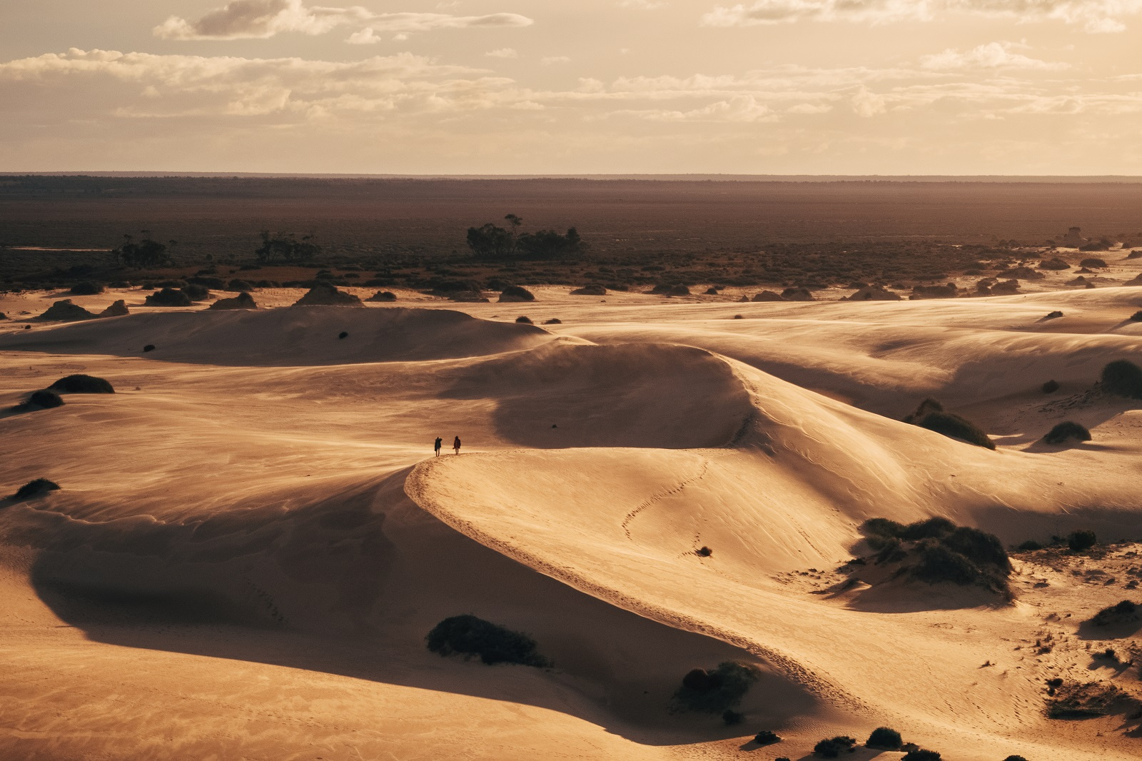 Sand dunes in Mungo National Park. Photo: Melissa Findley/OEH