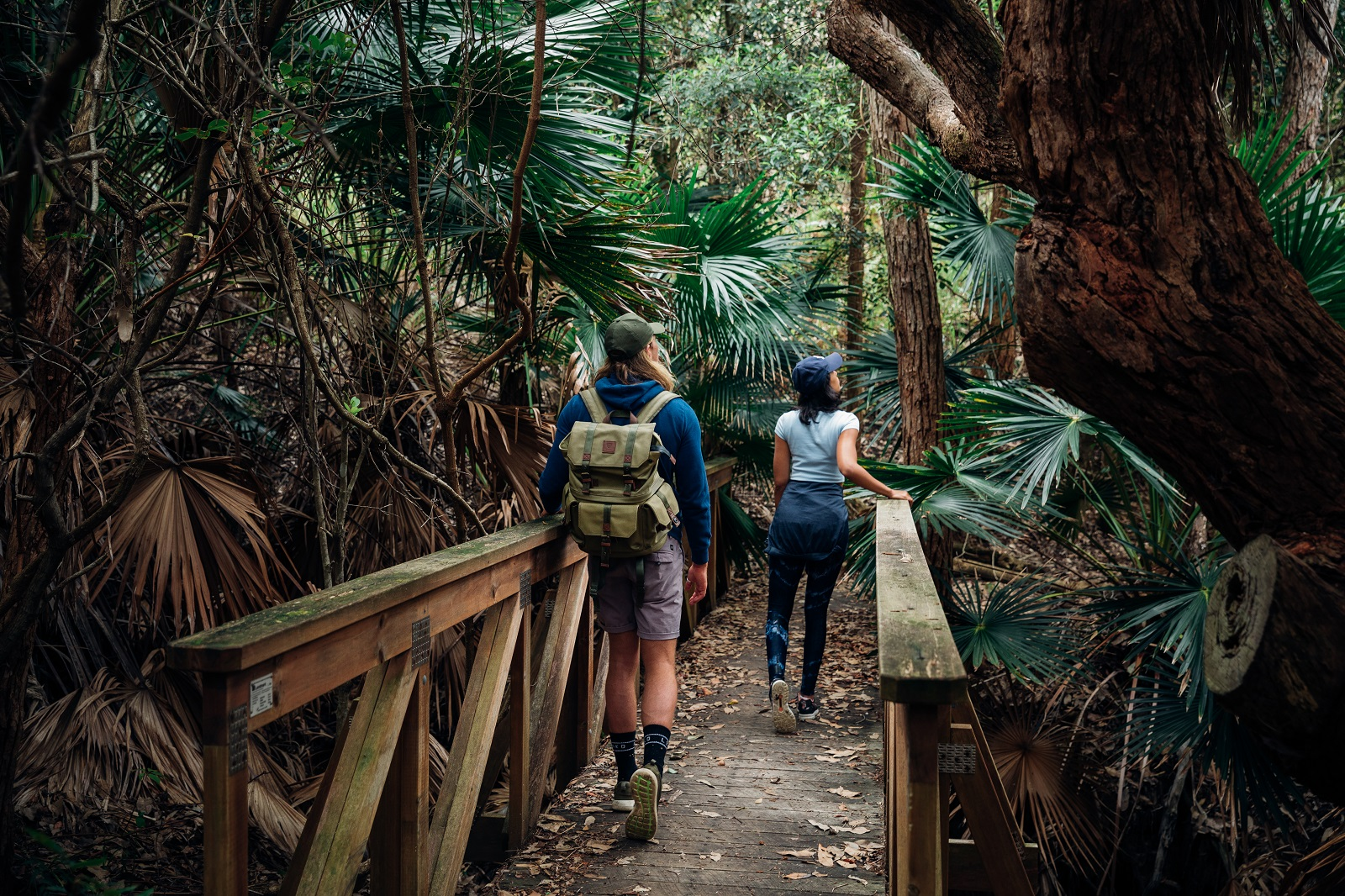 A woman and a man walking across a bridge on the Depot Beach Rainforest walk