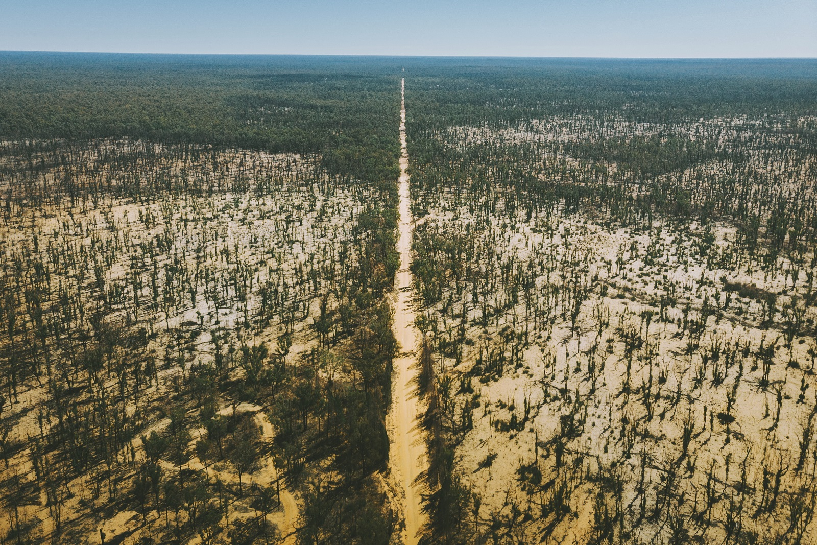 Aerial view of the road at Timmallallie National Park. Photo: Harrison Candlin/OEH