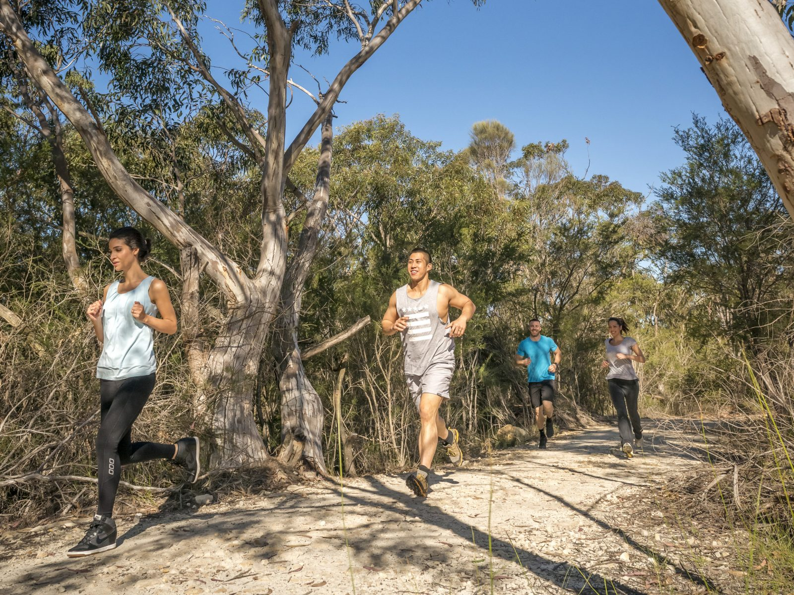 People running on a track in Garigal National Park. Photo: John Spencer/OEH