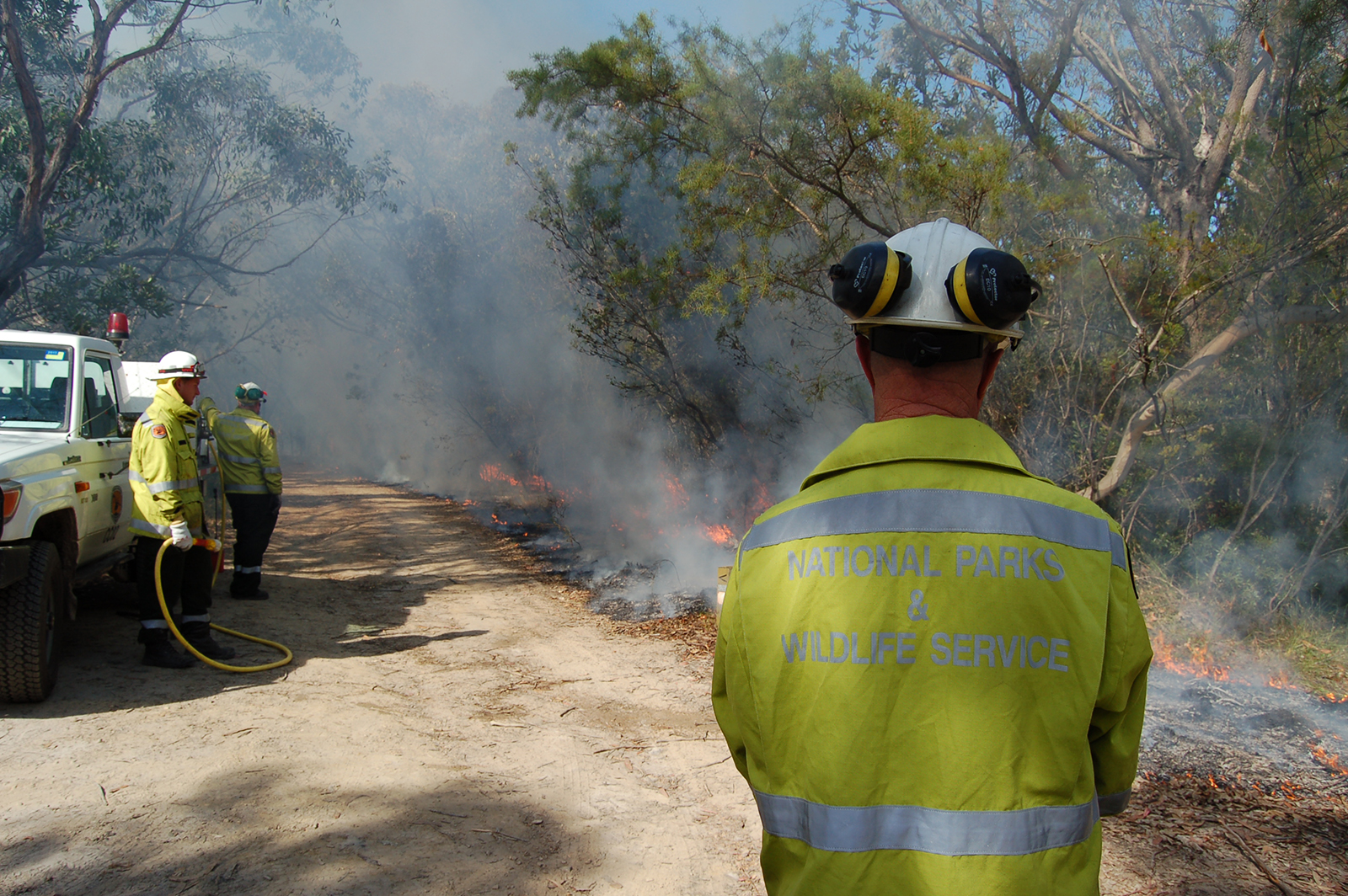 NPWS firefighters conducting planned controlled burning in Brisbane Water National Park. Photo: Susan Davis/OEH