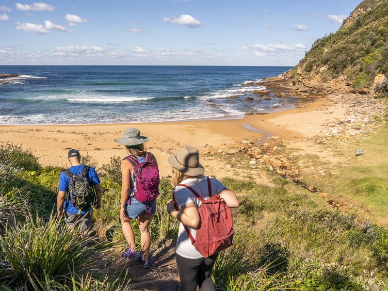 Three people hiking on the Bouddi Coastal walk near Little Beach campground, Bouddi National Park. Photo: John Spencer/DPIE