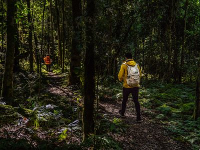 Two people walking in Barrington Tops National Park