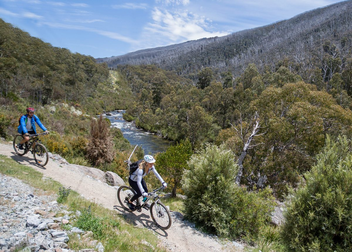 Two people riding on the Thredbo Valley track, Thredbo-Perisher area in Kosciuszko National Park. Photo: Boen Ferguson/DPIE