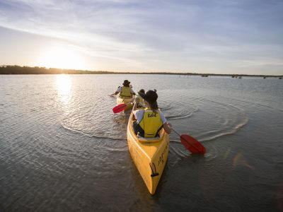 A family in two canoes paddles down the Murray River, Murray Valley National Park. Photo: Boen Ferguson/DPIE