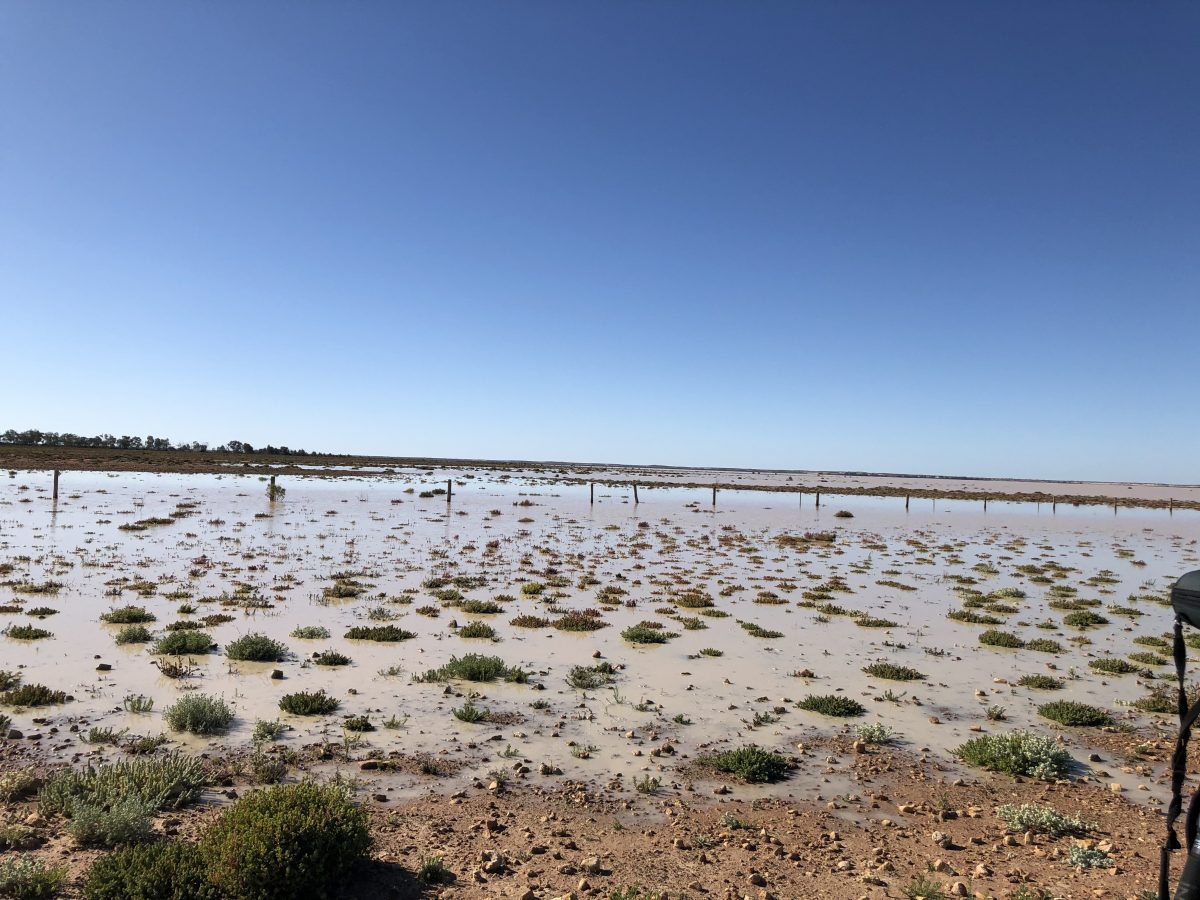 Perry Lake filled with water in Paroo-Darling National Park
