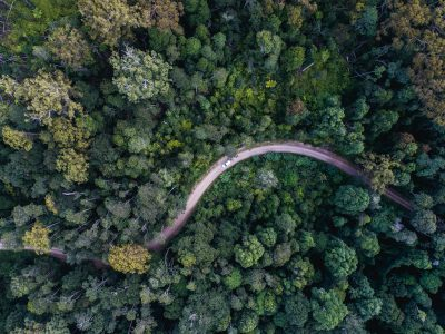 Aerial view of the road out of Werrimkimbe National Park. Photo: Rob Mulally / DPIE